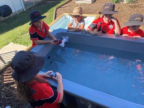 Students standing around aquaponics water tub